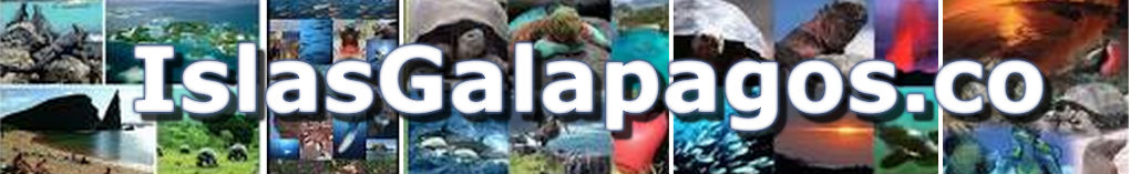 Turismo Islas Galapagos, Especies, Islas, Rutas y curiosidades de las Galápagos